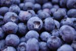 Belgium can't keep up with growing blueberry consumption