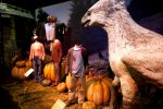Harry Potter Exhibition opens in Brussels