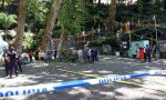 Falling oak tree kills religious festivalgoers on Madeira