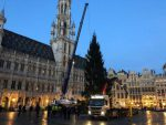 Christmas tree set up in Brussels Grand Place