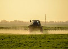 Cities against pesticides put pressure on French government